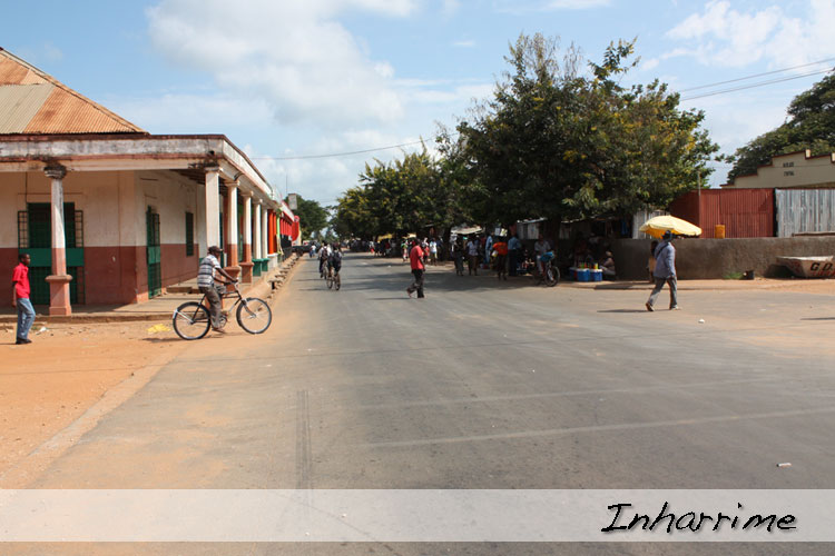 Gallery of caju afrique mozambique for See more com